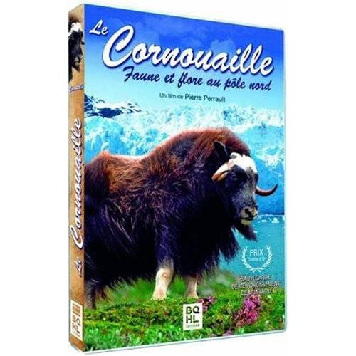 DVD - Cornwall Wildlife and nature at the North Pole