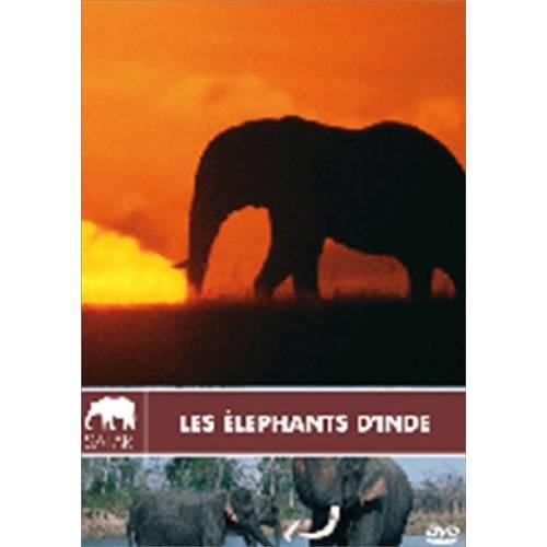 DVD - Les éléphants d'Inde