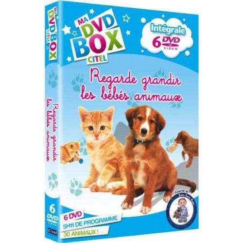 DVD - Regarde grandir les petits animaux : L'intégrale / Coffret 6 DVD