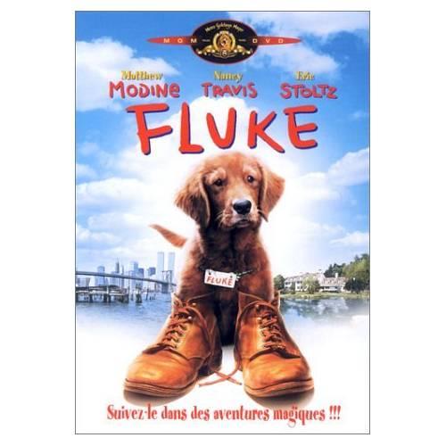 DVD - FLUKE